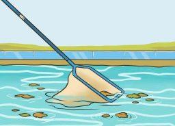 Peneirar a piscina