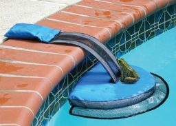 Plataforma para sapos na piscina