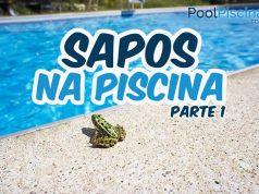 Sapos na piscina