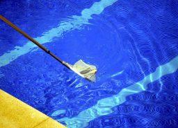 Retirar os insetos da piscina com a peneira
